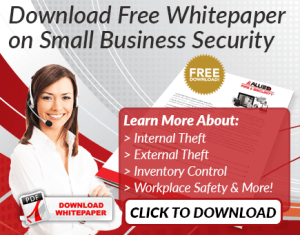 Download Free Whitepaper on Small Business Security